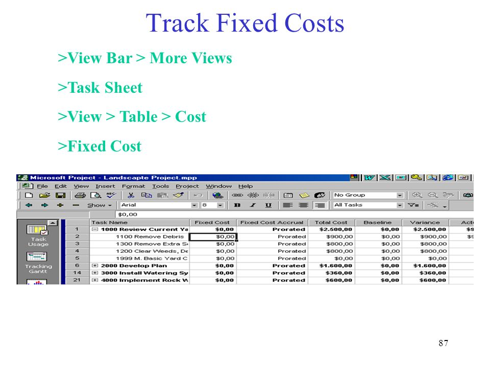 Track Fixed Costs >View Bar > More Views >Task Sheet
