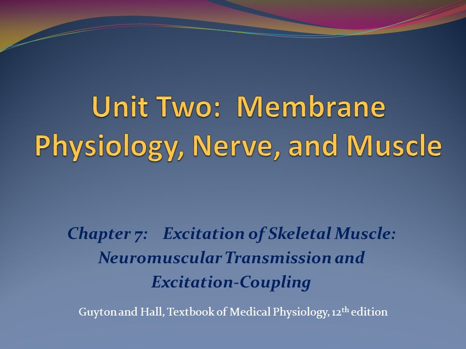 Unit Two: Membrane Physiology, Nerve, and Muscle - ppt video online ...
