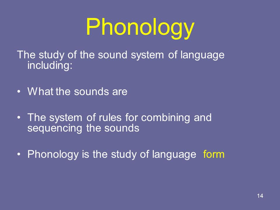 Phonology The study of the sound system of language including: