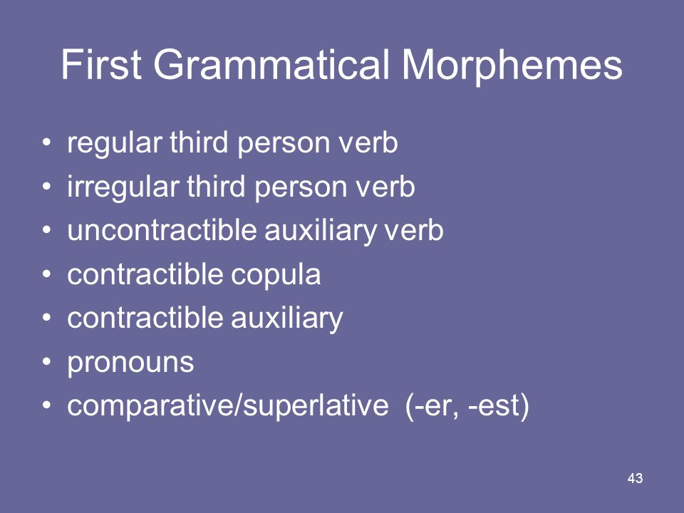 First Grammatical Morphemes