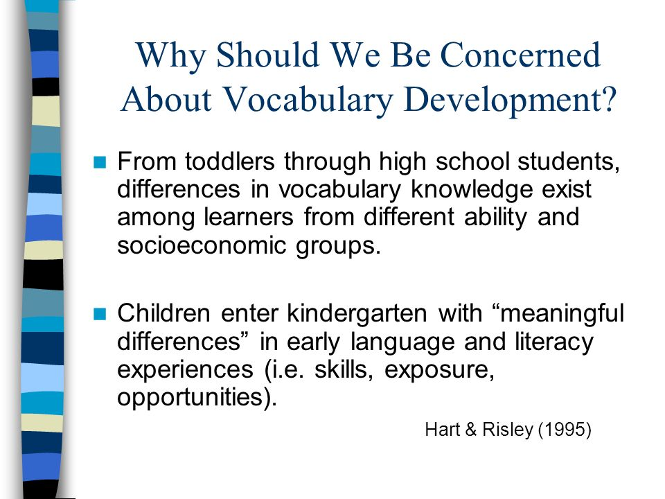 Why Should We Be Concerned About Vocabulary Development