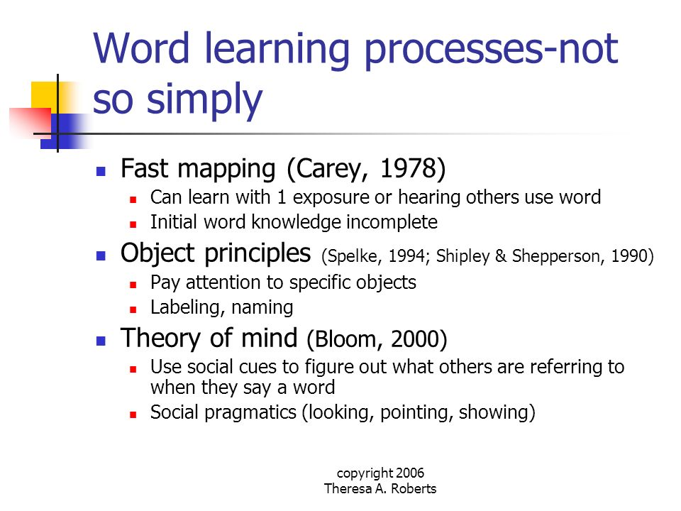 Word learning processes-not so simply