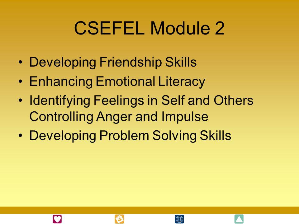CSEFEL Module 2 Developing Friendship Skills