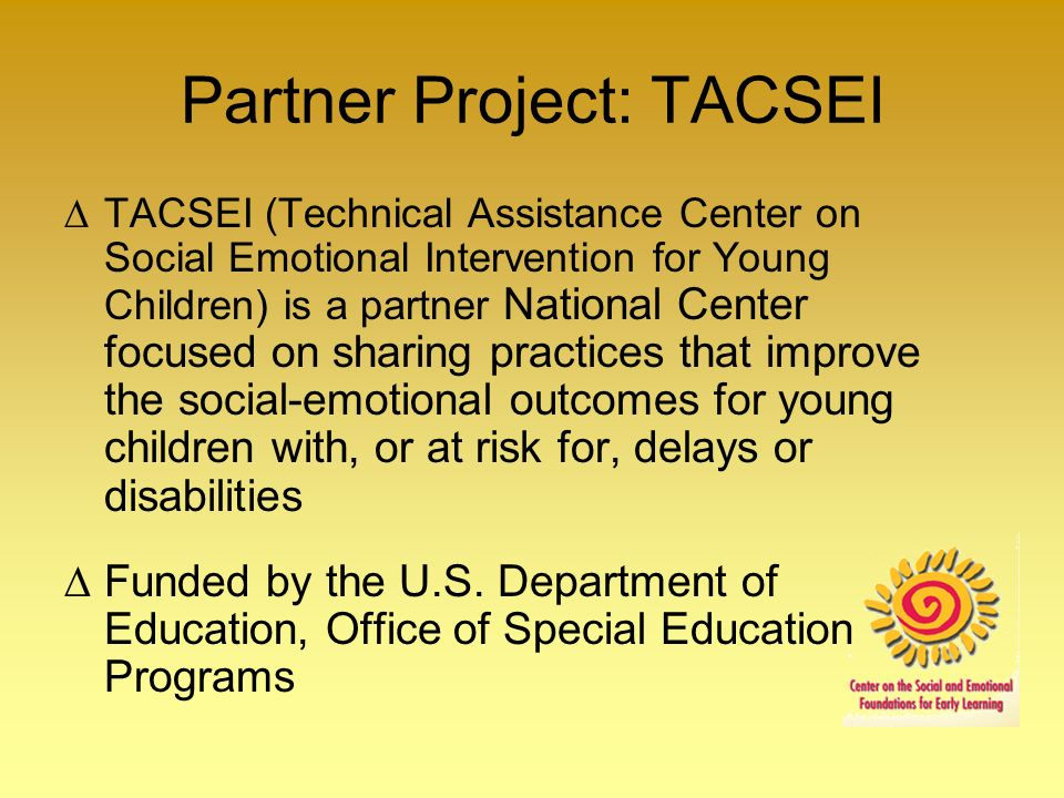 Partner Project: TACSEI