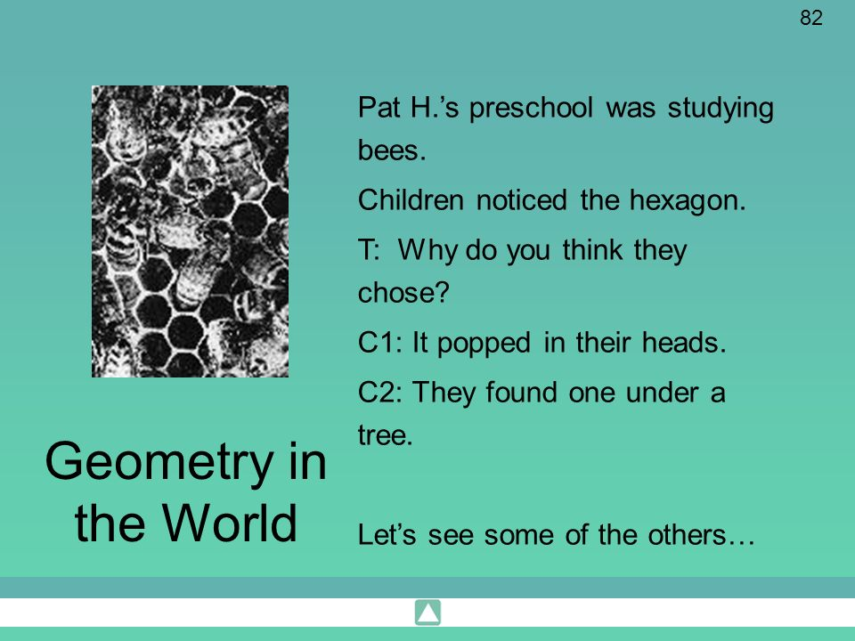 Geometry in the World Pat H.'s preschool was studying bees.
