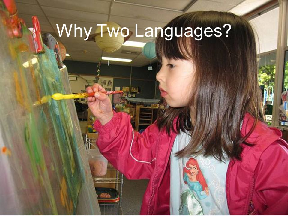 Why Two Languages