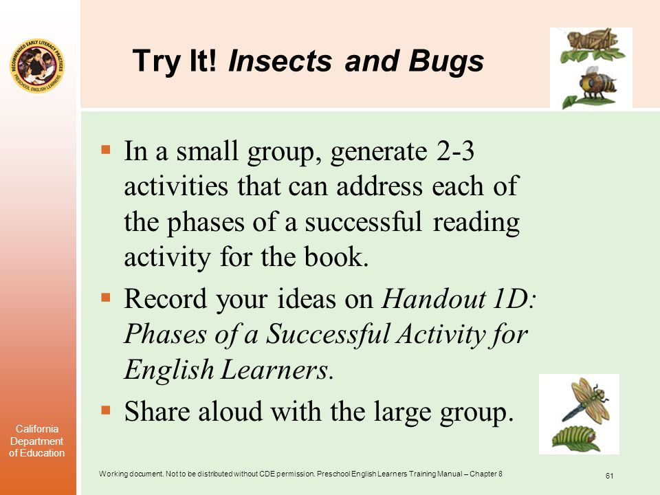 Try It! Insects and Bugs