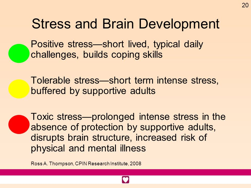 Stress and Brain Development