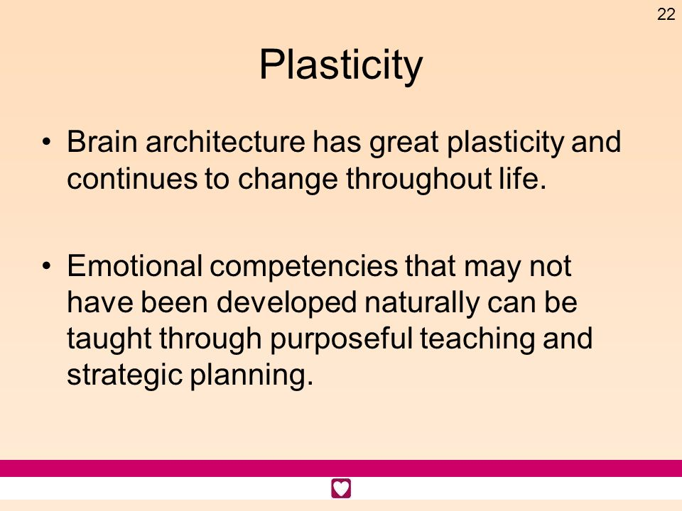Plasticity Brain architecture has great plasticity and continues to change throughout life.