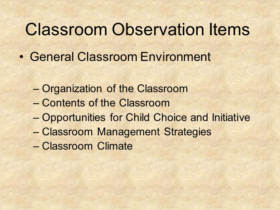 Classroom Observation Items