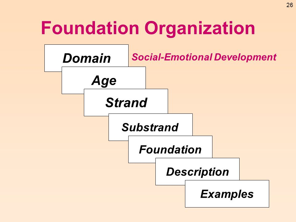 Foundation Organization
