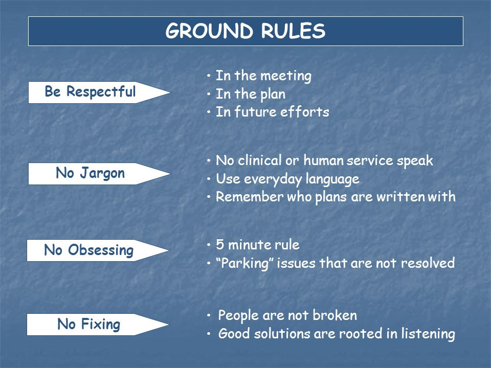 GROUND RULES In the meeting In the plan Be Respectful