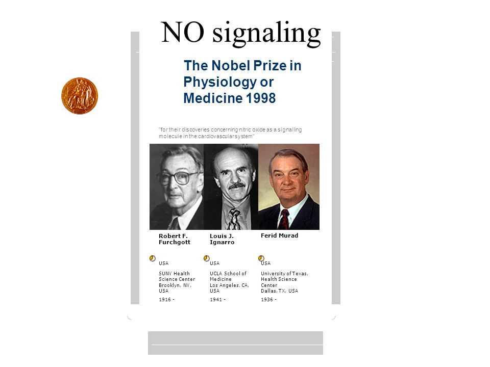 NO signaling The Nobel Prize in Physiology or Medicine 1998