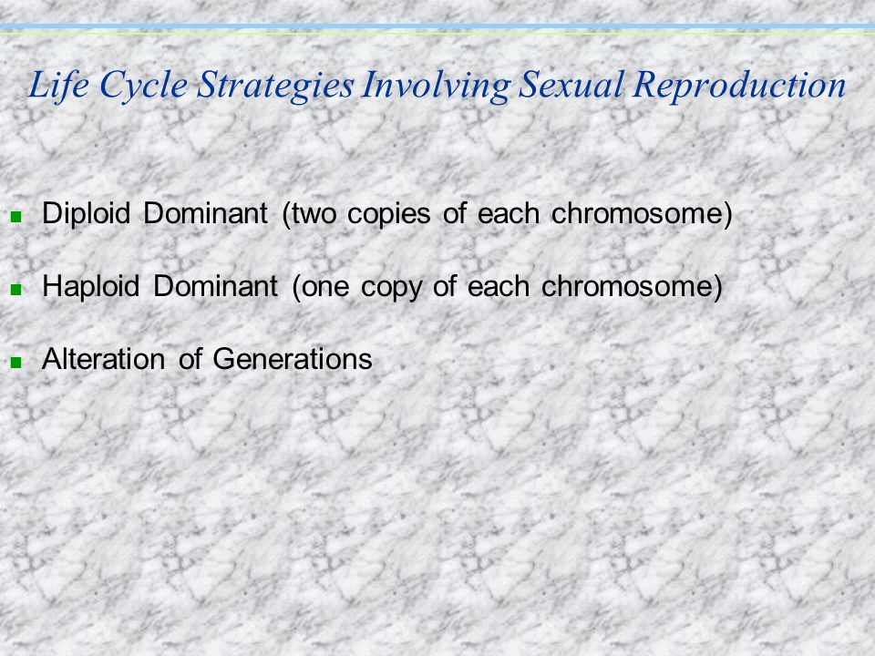 Life Cycle Strategies Involving Sexual Reproduction