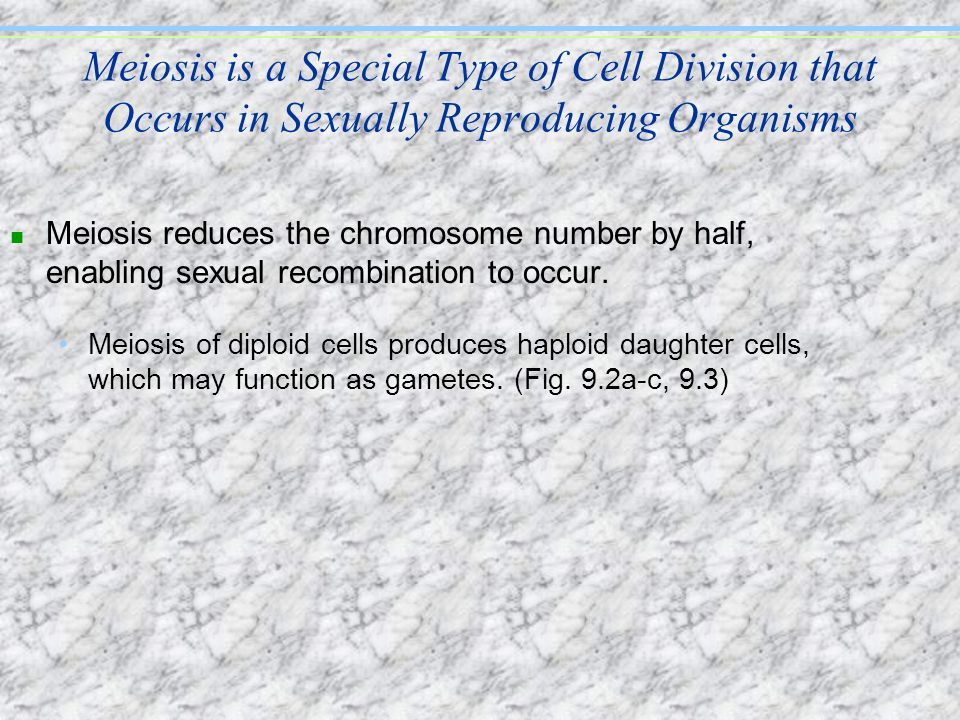 Meiosis is a Special Type of Cell Division that Occurs in Sexually Reproducing Organisms