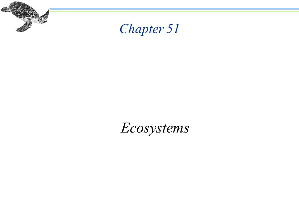 Chapter 51 Ecosystems