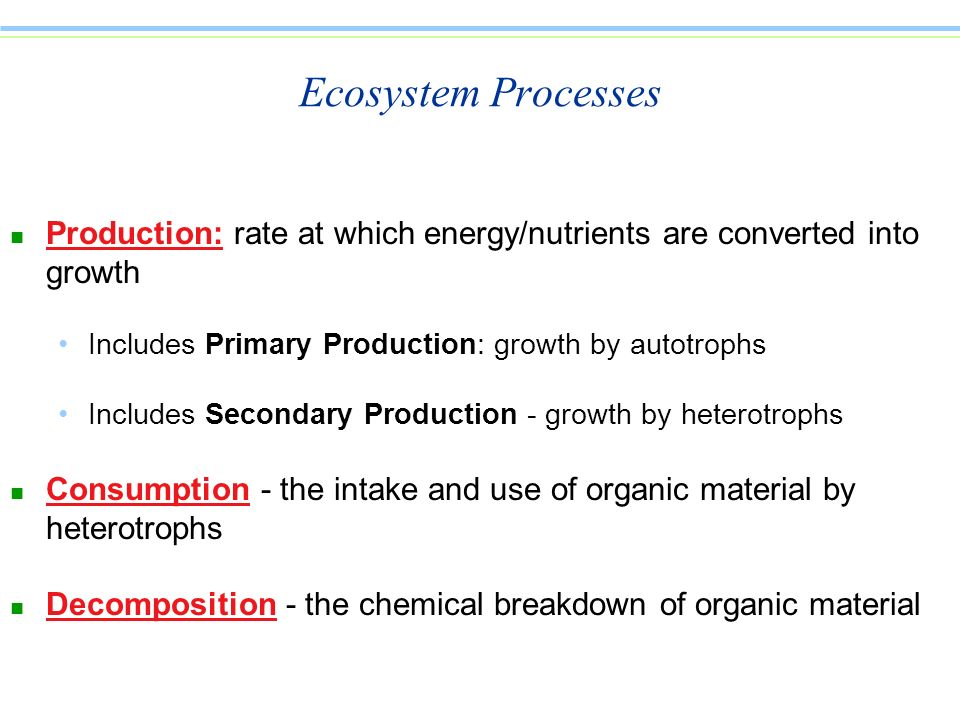 Ecosystem Processes Production: rate at which energy/nutrients are converted into growth. Includes Primary Production: growth by autotrophs.