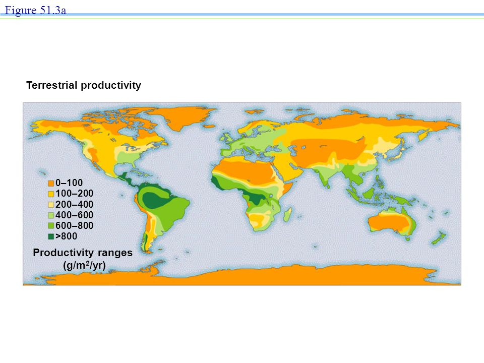 Terrestrial productivity