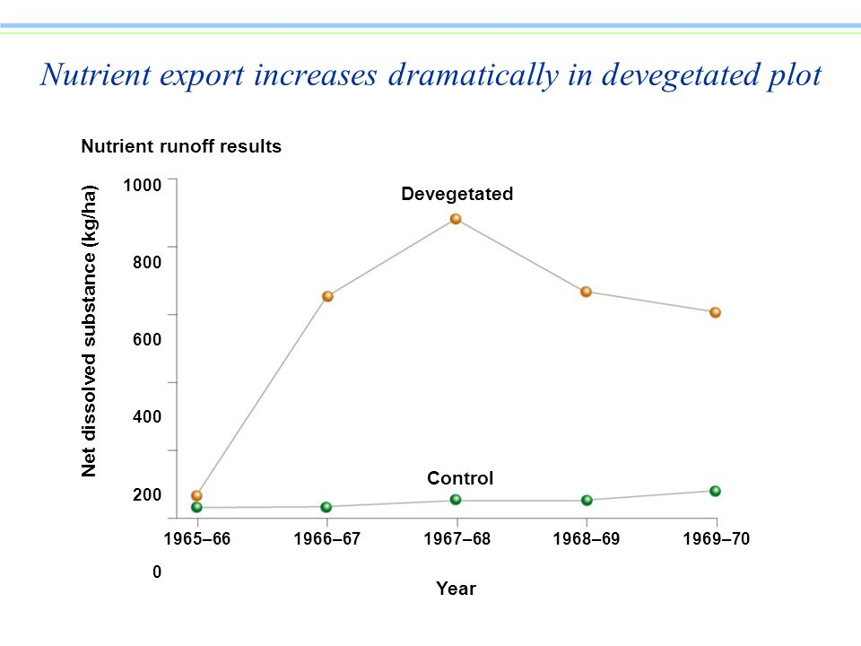 Nutrient export increases dramatically in devegetated plot