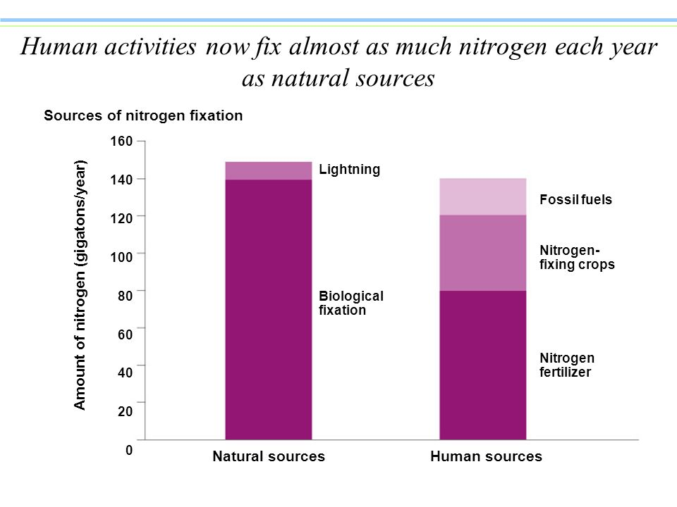 Human activities now fix almost as much nitrogen each year as natural sources