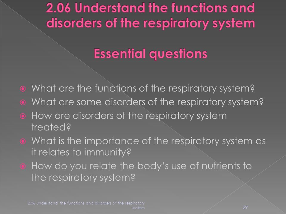 2.05 Remember the structures of the respiratory system ...
