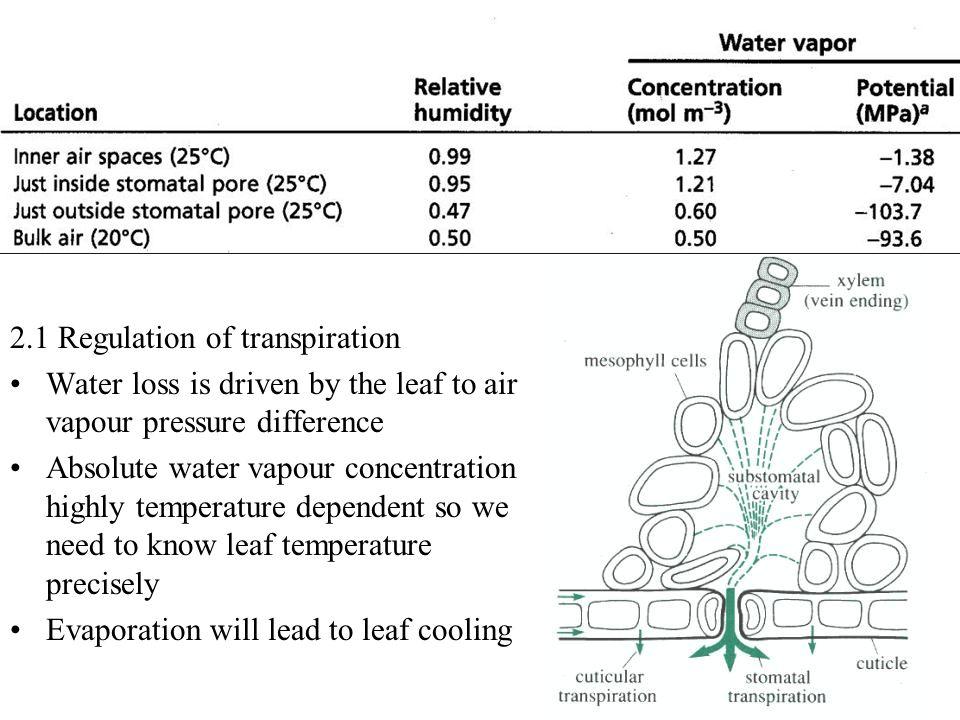 2.1 Regulation of transpiration