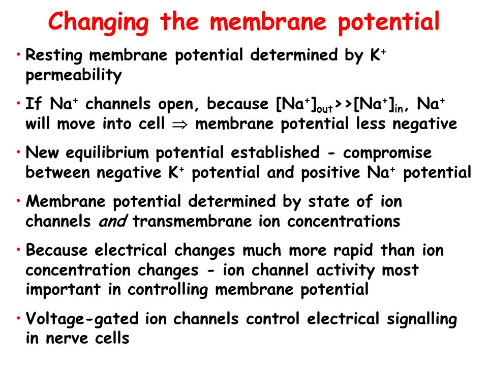 Changing the membrane potential