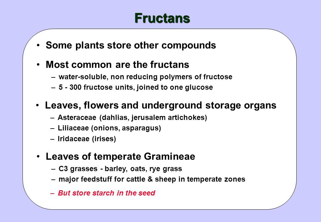 Fructans Some plants store other compounds