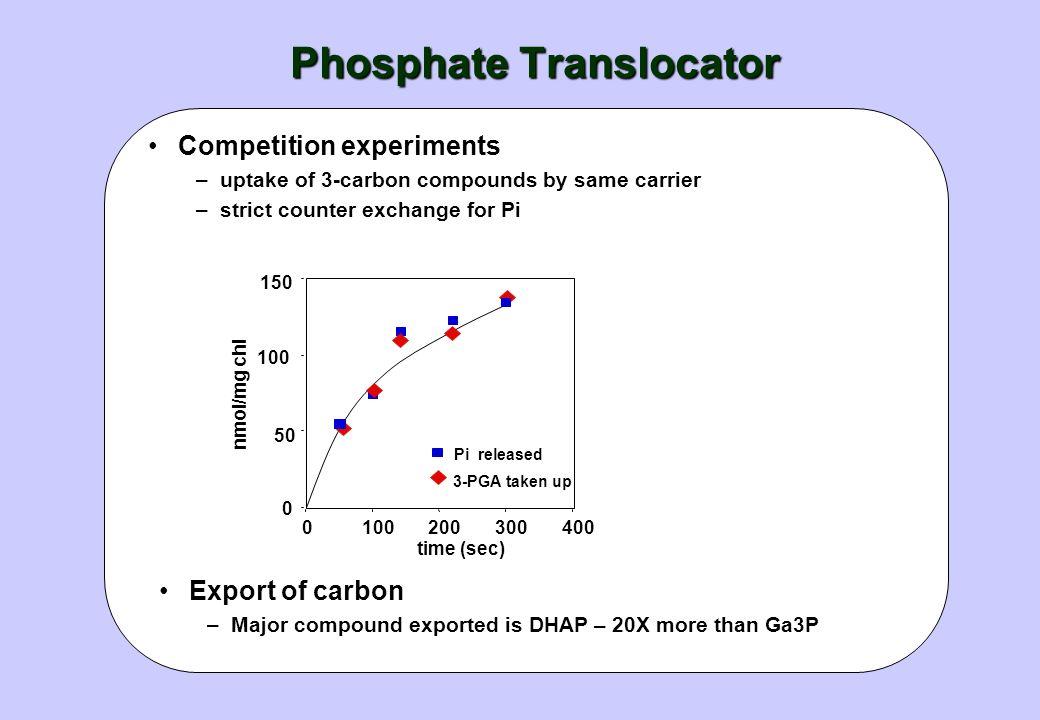 Phosphate Translocator