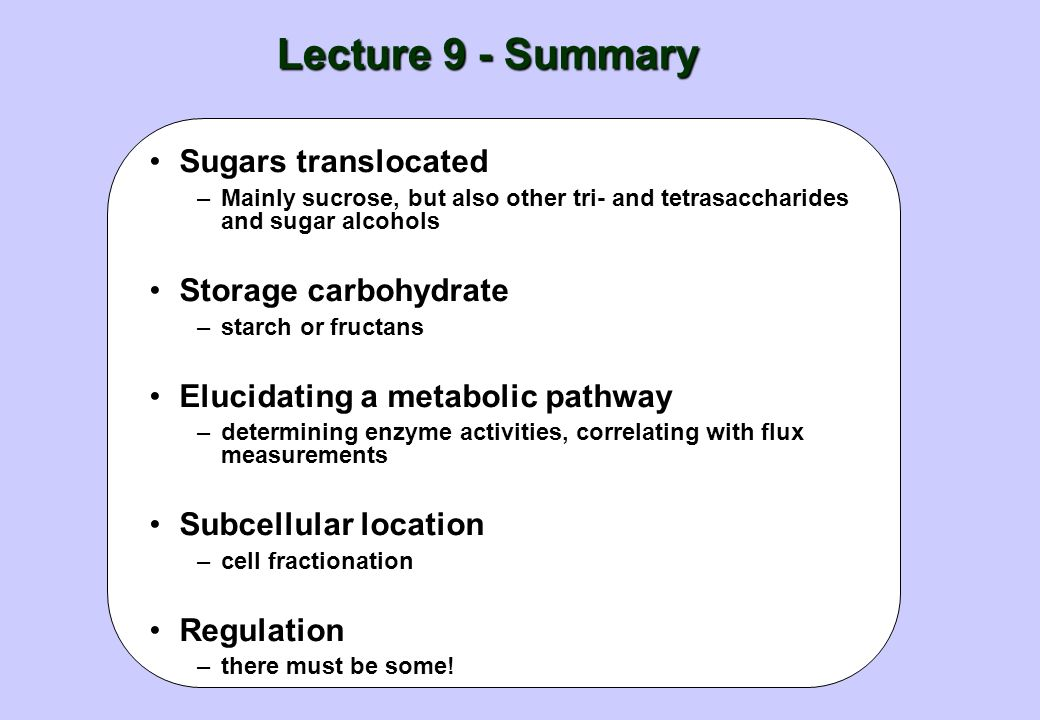 Lecture 9 - Summary Sugars translocated Storage carbohydrate