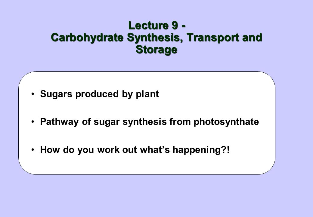Lecture 9 - Carbohydrate Synthesis, Transport and Storage