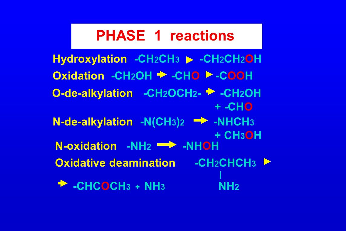 PHASE 1 reactions Hydroxylation -CH2CH3 -CH2CH2OH