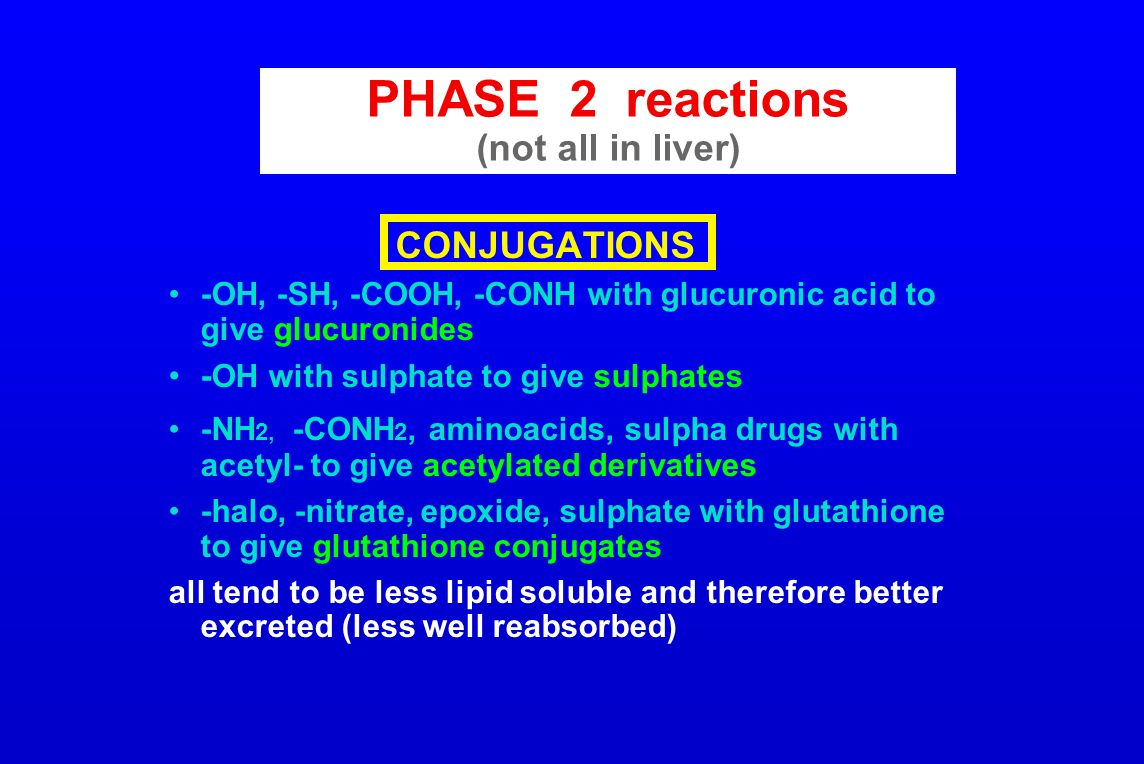 PHASE 2 reactions (not all in liver)