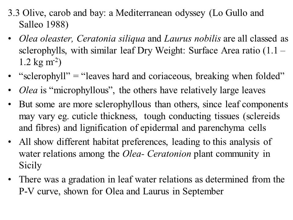 3.3 Olive, carob and bay: a Mediterranean odyssey (Lo Gullo and Salleo 1988)