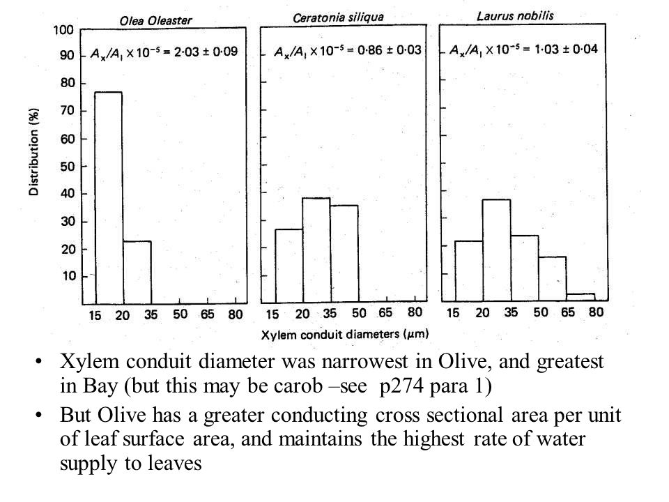Xylem conduit diameter was narrowest in Olive, and greatest in Bay (but this may be carob –see p274 para 1)