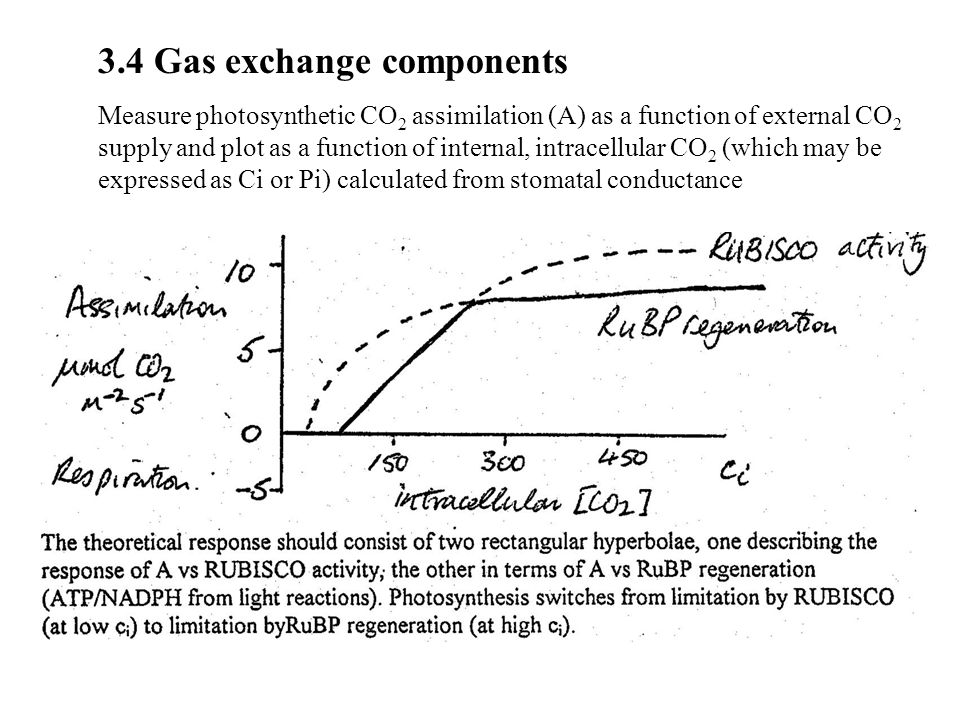 3.4 Gas exchange components