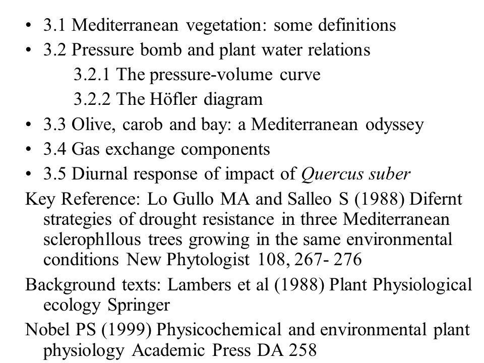 3.1 Mediterranean vegetation: some definitions