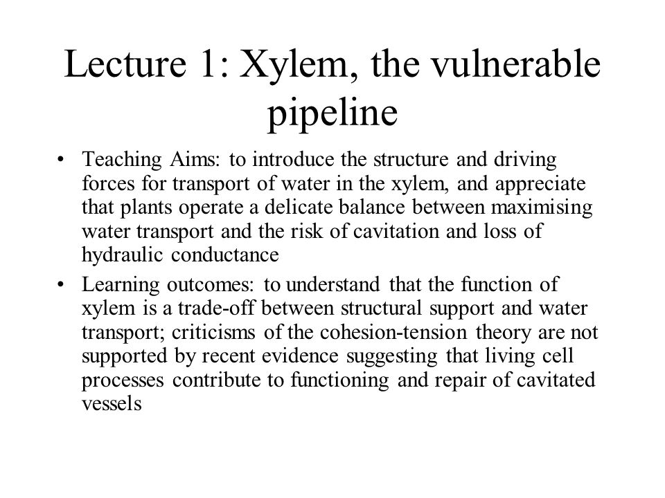 Lecture 1: Xylem, the vulnerable pipeline