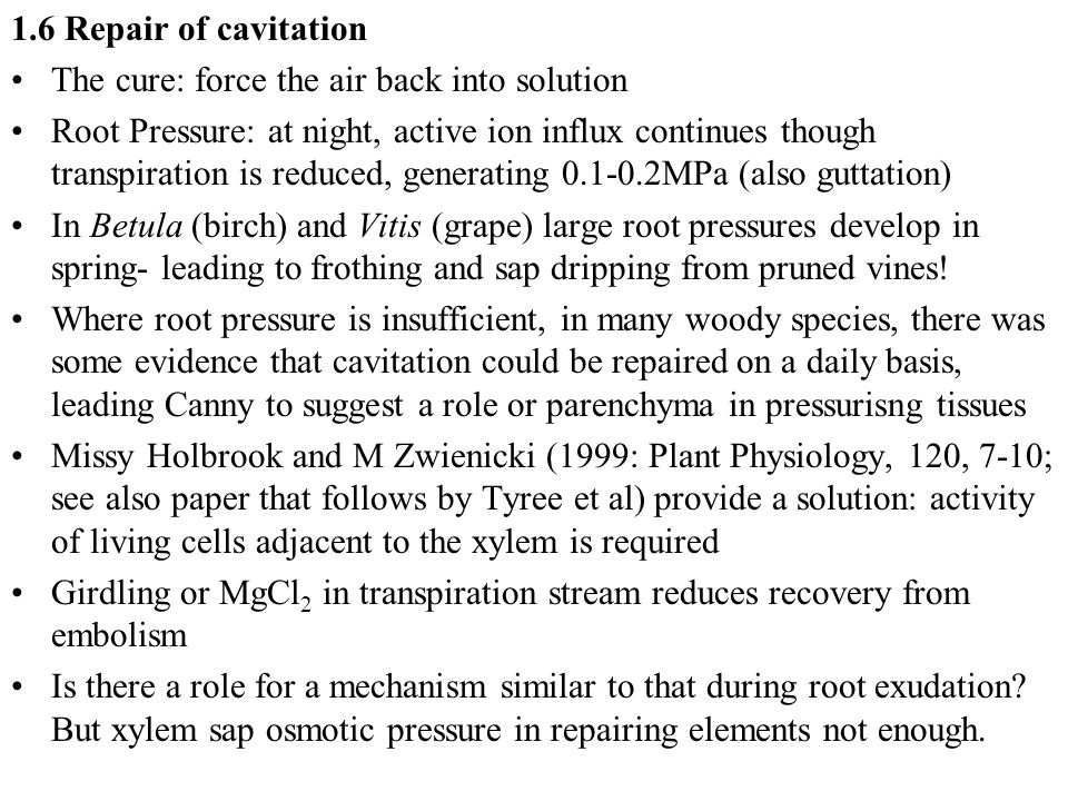 1.6 Repair of cavitation The cure: force the air back into solution.
