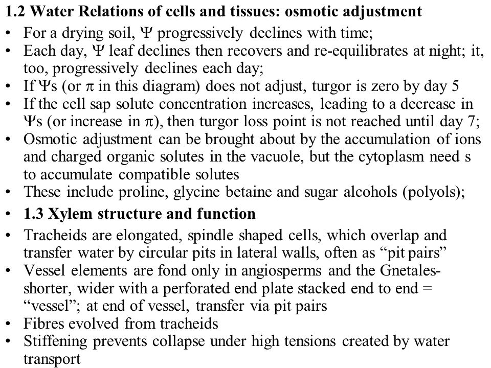 1.2 Water Relations of cells and tissues: osmotic adjustment