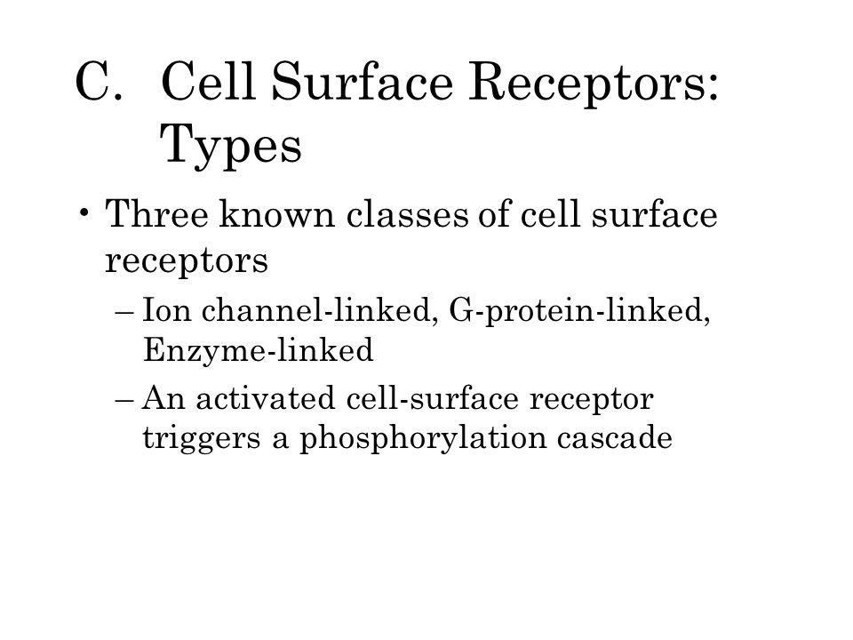 C. Cell Surface Receptors: Types