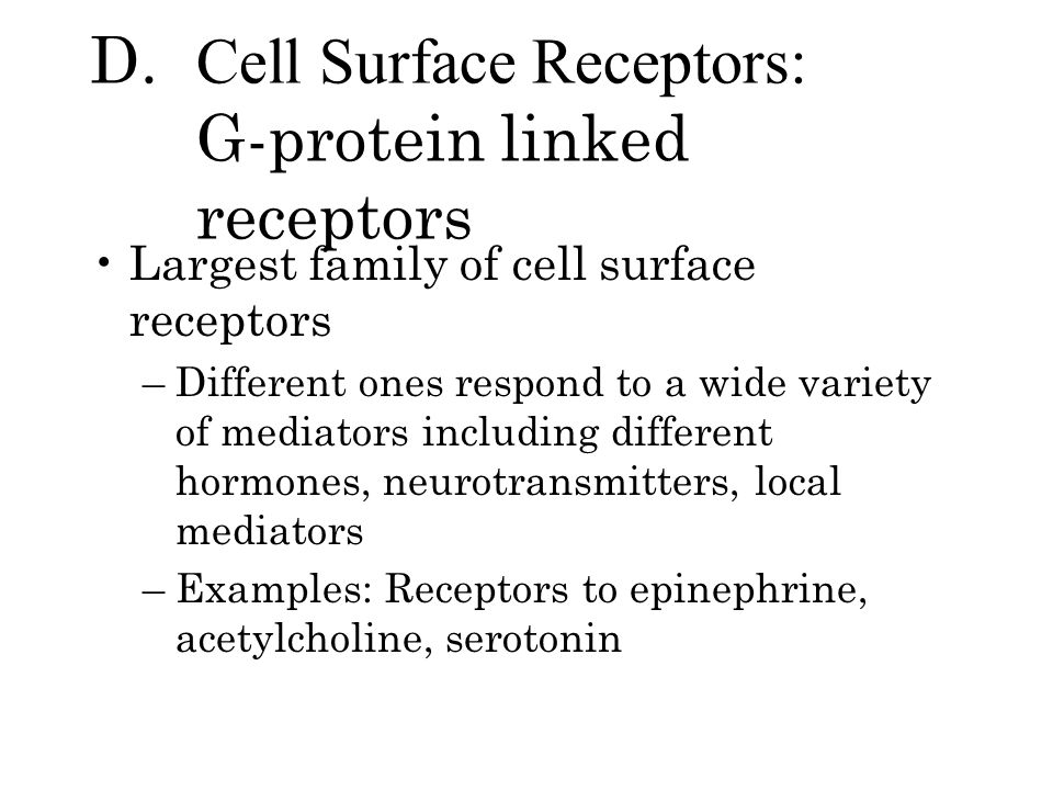 D. Cell Surface Receptors: G-protein linked receptors