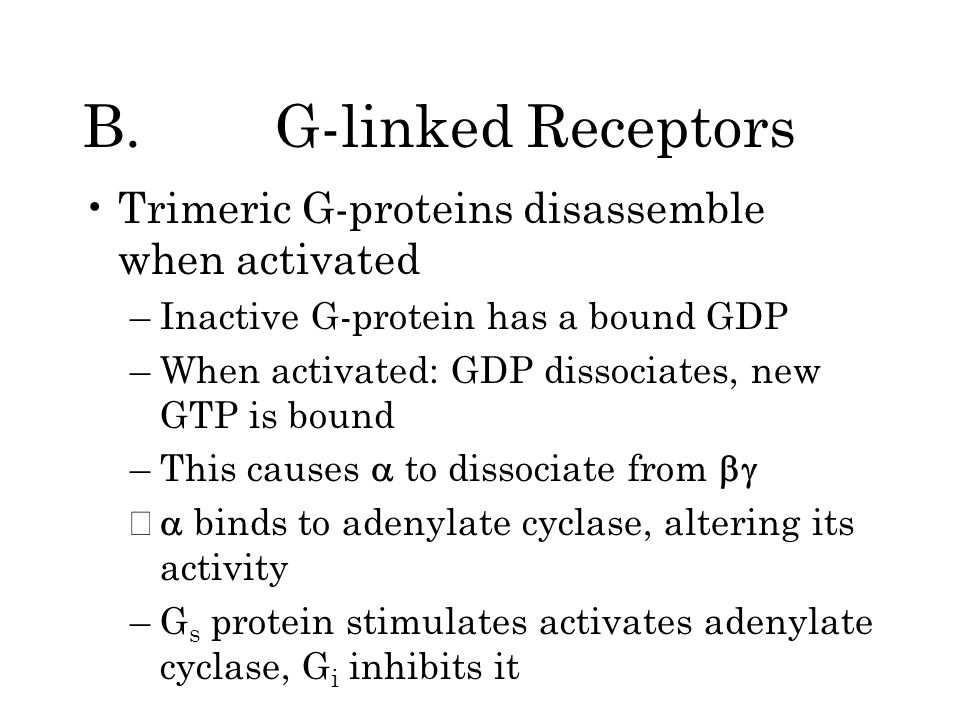 B. G-linked Receptors Trimeric G-proteins disassemble when activated