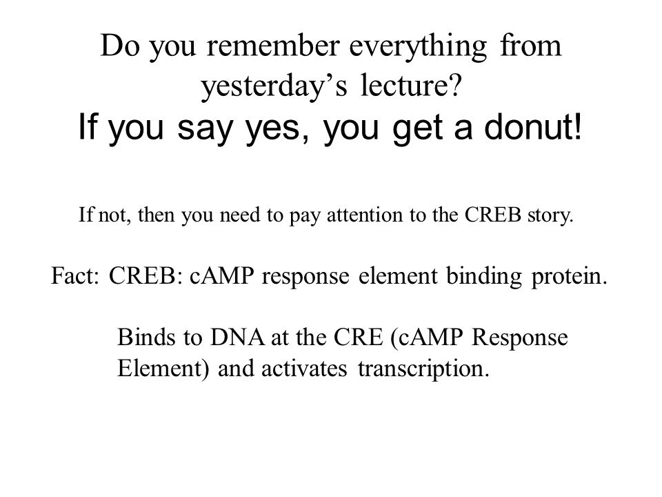 Do you remember everything from yesterday's lecture
