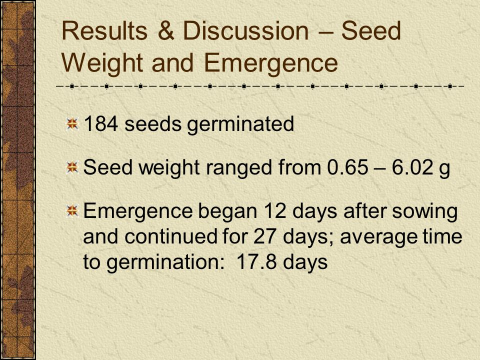 Results & Discussion – Seed Weight and Emergence