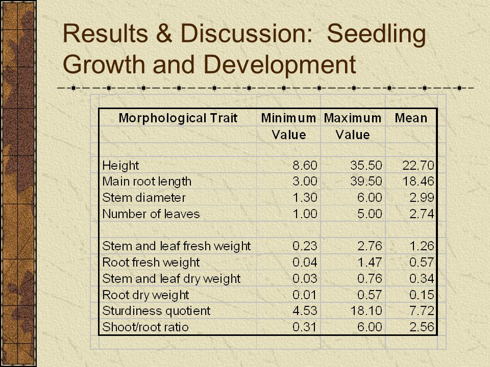 Results & Discussion: Seedling Growth and Development