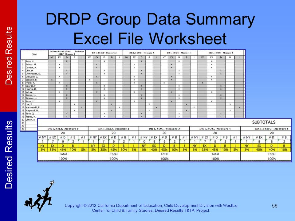 DRDP Group Data Summary Excel File Worksheet