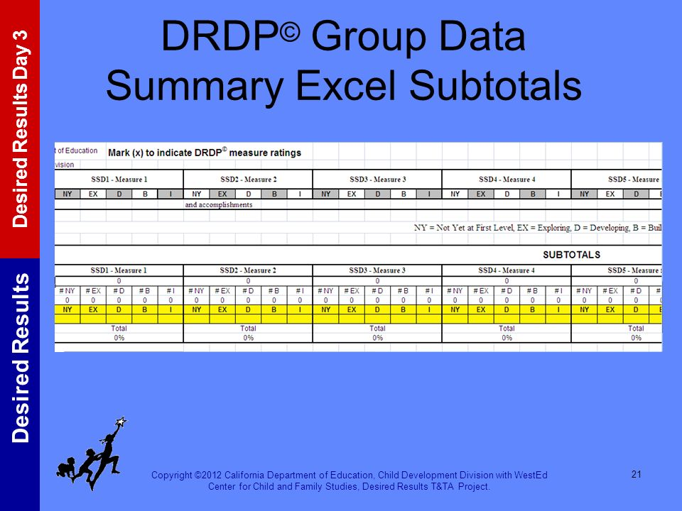 DRDP© Group Data Summary Excel Subtotals