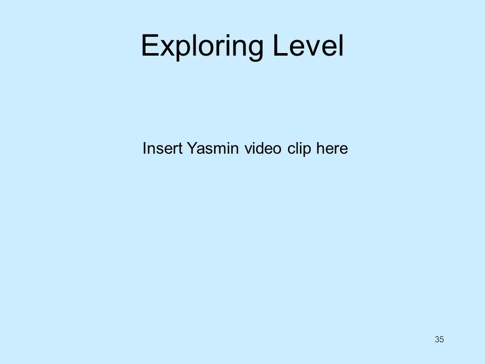 Exploring Level Insert Yasmin video clip here