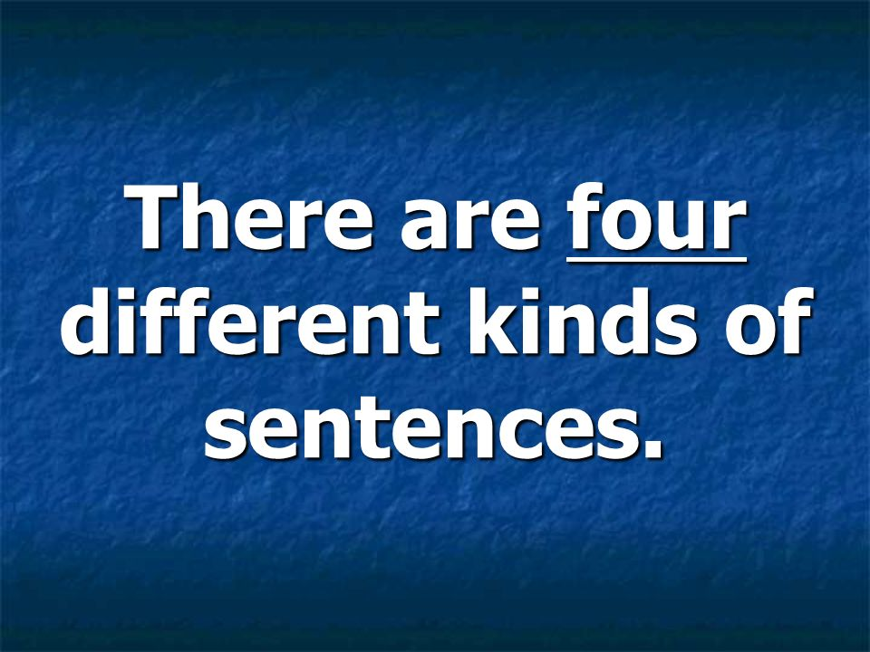There are four different kinds of sentences.